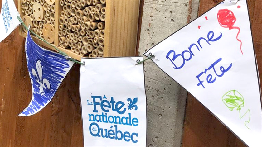 Pictures of buntings with colours of Québec